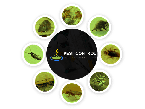 Pest Control Greenway